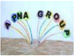 APNA GROUP Logo